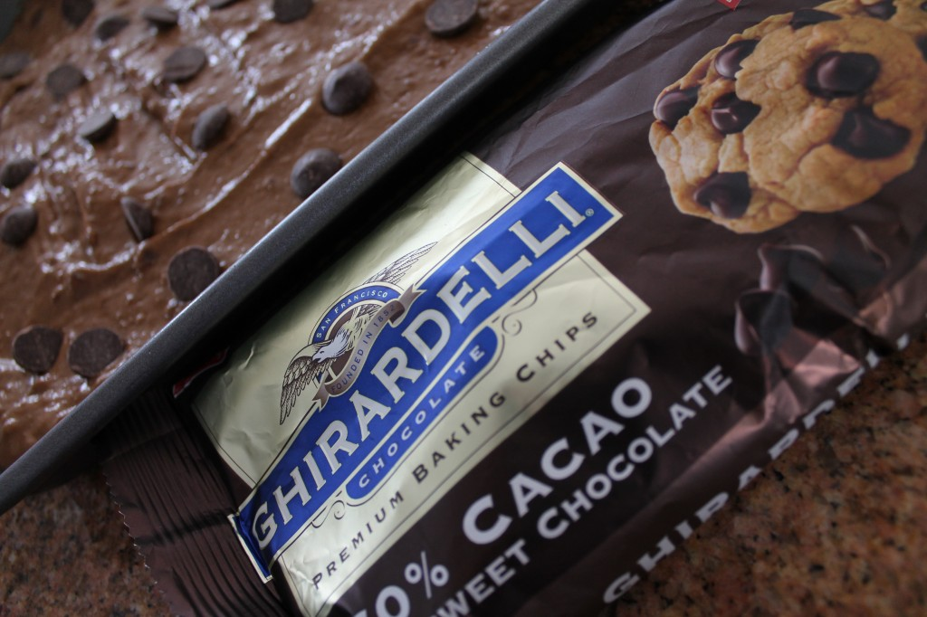 Flourless Chocolate Brownies with Ghiradelli Dark Chocolate Chips