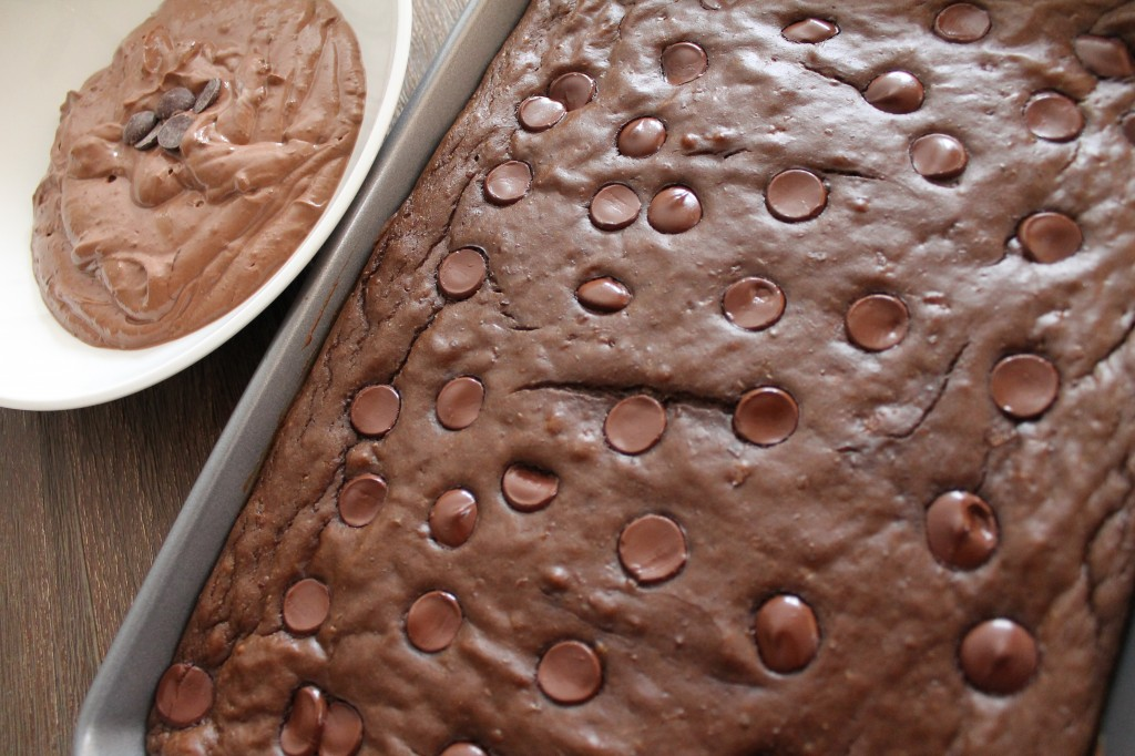 Flourless Dark Chocolate Brownies with a Triple Chocolate Greek Yogurt Frosting