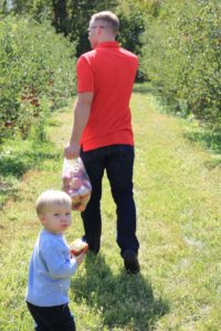 Apple Picking at the Orchard